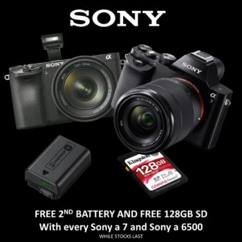 offer sony free battery card